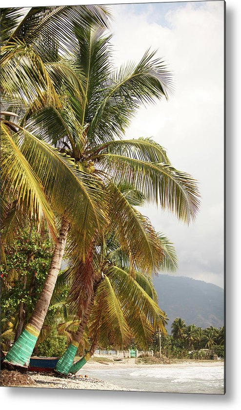 Tropical Tree Metal Print featuring the photograph Beach In Haiti by 1001nights