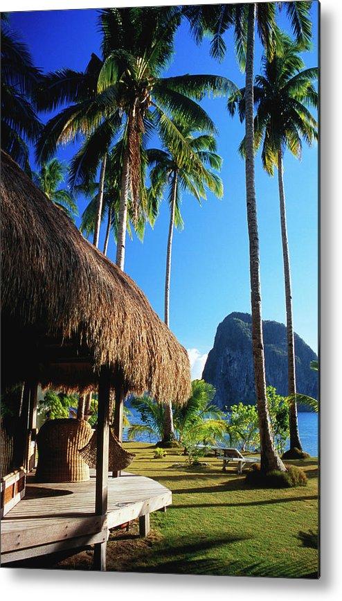 Tropical Tree Metal Print featuring the photograph Dolarog Beach Resort With Inabuyatan by Dallas Stribley