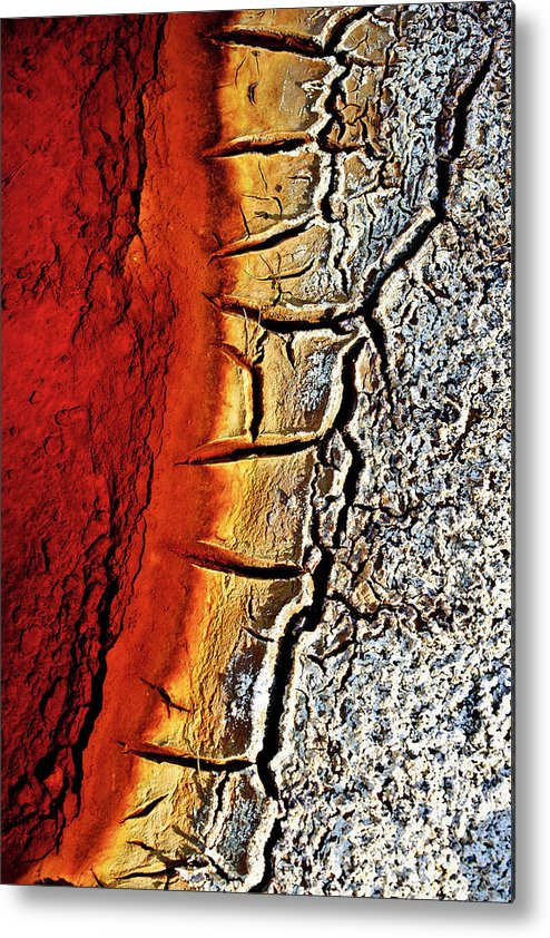 Outdoors Metal Print featuring the photograph Edge Of Pond In Rio Tinto Mining Area by Jjguisado