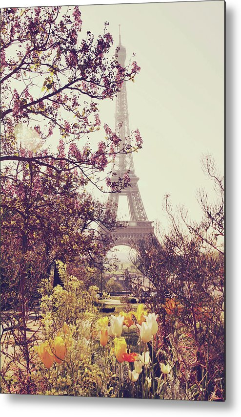 Treetop Metal Print featuring the photograph Eiffel Tower, Paris by Liz Rusby