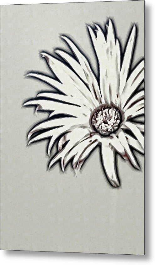 Rockville Metal Print featuring the photograph Gerbera Flower Shape by Maria Mosolova