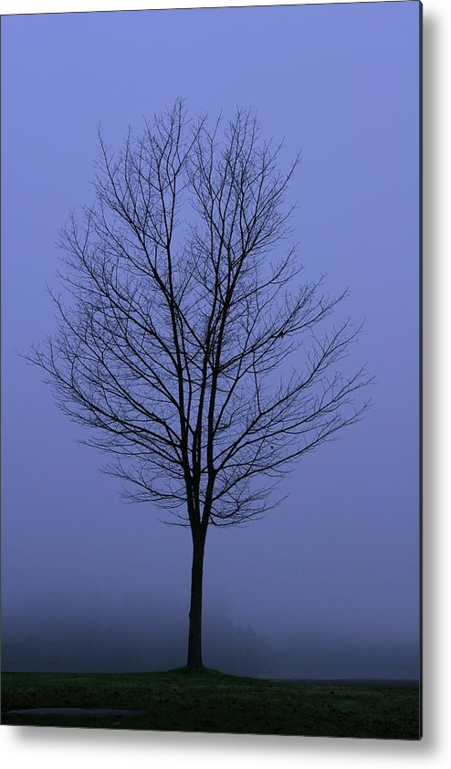 November Metal Print featuring the photograph Moody Blue November Day by Zennie