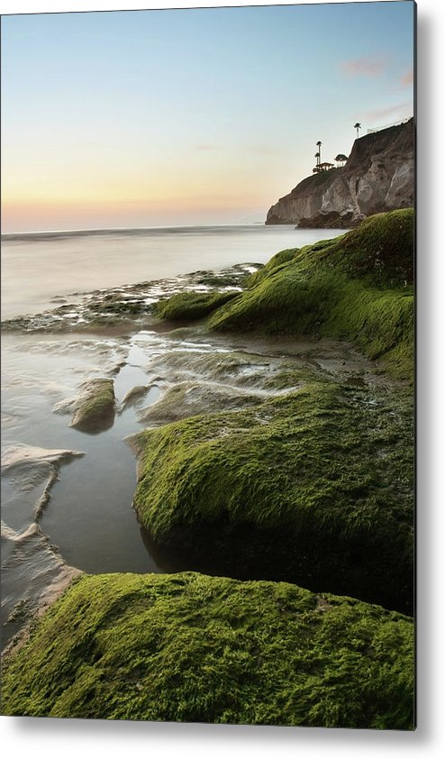 Pismo Beach Metal Print featuring the photograph Mossy Rocks At Pismo Beach by Kevinruss