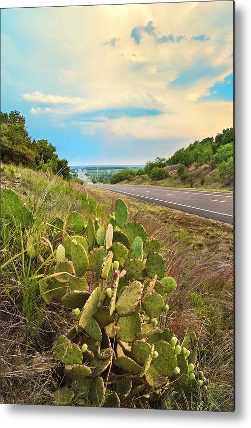 Scenics Metal Print featuring the photograph Rural Texas Highway, Prickly Pear by Dszc