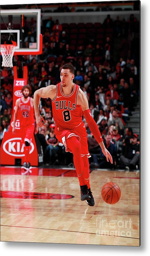 Chicago Bulls Metal Print featuring the photograph Zach Lavine by Jeff Haynes