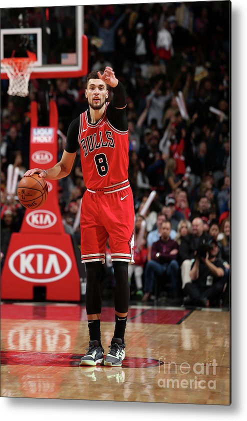 Chicago Bulls Metal Print featuring the photograph Zach Lavine by Gary Dineen