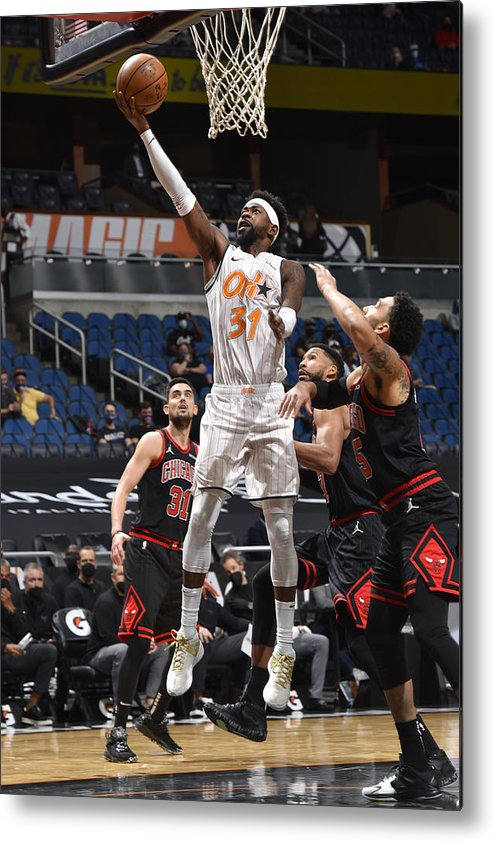 Nba Pro Basketball Metal Print featuring the photograph Terrence Ross by Gary Bassing