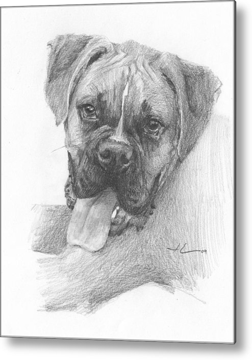 <a Href=http://miketheuer.com Target =_blank>www.miketheuer.com</a> Boxer Dog Pencil Portrait Metal Print featuring the drawing Boxer Dog Pencil Portrait by Mike Theuer