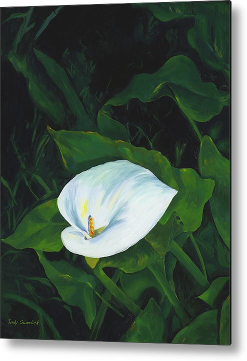 Calla Lily Metal Print featuring the painting Calla Lily in the Garden of Diego and Frida by Judy Swerlick