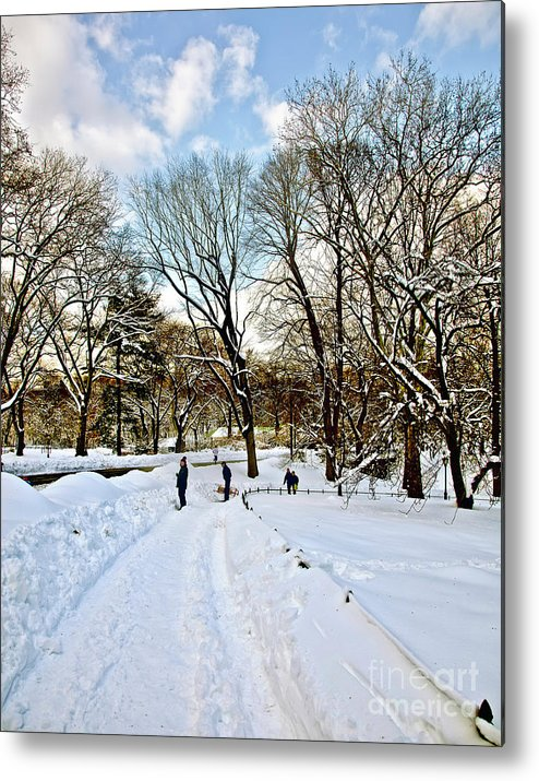 Snow Metal Print featuring the photograph Central Park Snow Storm One Day Later2 by Madeline Ellis