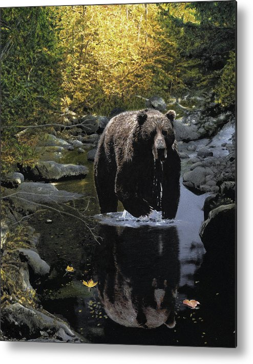Grizzly Bear Metal Print featuring the drawing Grizzly Reflection by Brent Ander