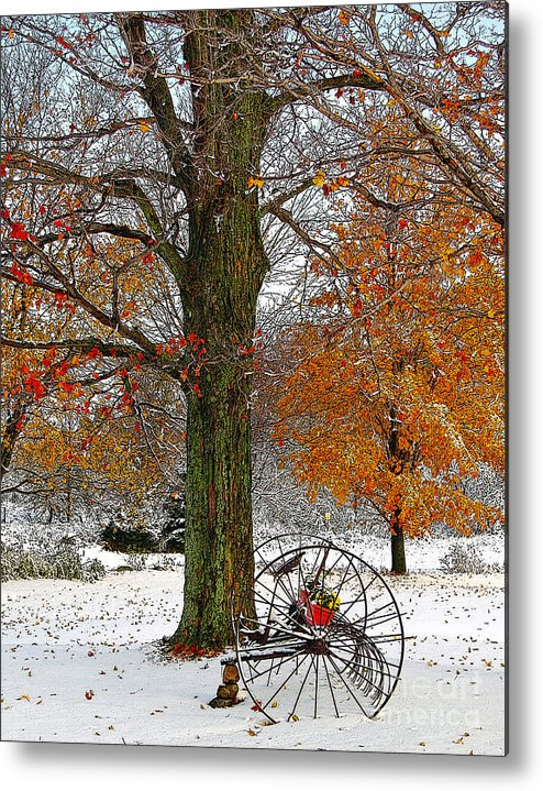 Berry Metal Print featuring the drawing To everything there is a season... by Diane E Berry