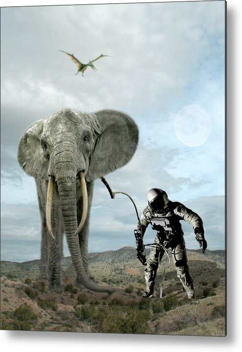 Montage Metal Print featuring the photograph Diorama of Earth by Jim Painter