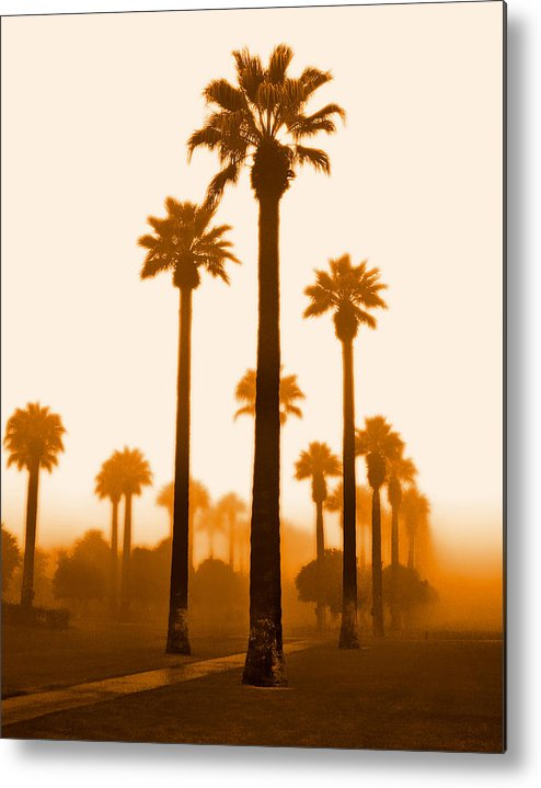 Metal Print featuring the photograph Foggy Sunrise by Jim Painter