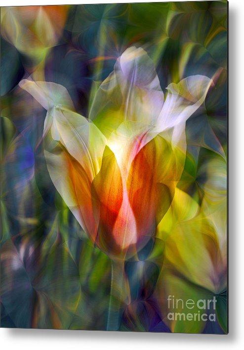 Floral Metal Print featuring the photograph Capturing the Sun by Chuck Brittenham