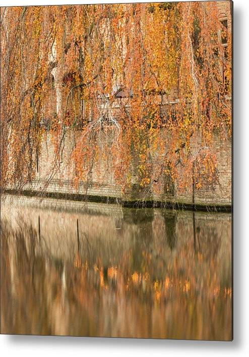Fall Metal Print featuring the photograph Fall in Bruges, Belgium by Dalibor Hanzal