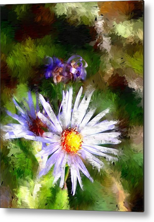 Flower Metal Print featuring the photograph Last rose of summer by David Lane