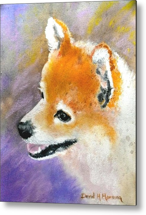 Pomeranian Metal Print featuring the painting Nevada by David Horning