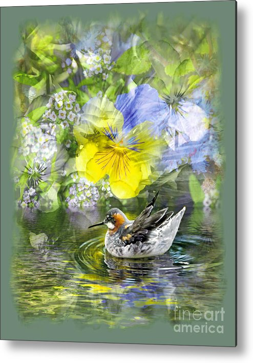 Floral Metal Print featuring the photograph Pintail Pond by Chuck Brittenham