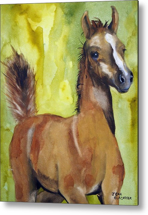 Filly Metal Print featuring the painting Saucy by Jean Blackmer