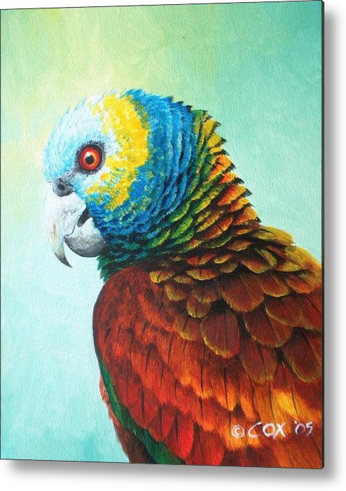 Chris Cox Metal Print featuring the painting St. Vincent Parrot by Christopher Cox