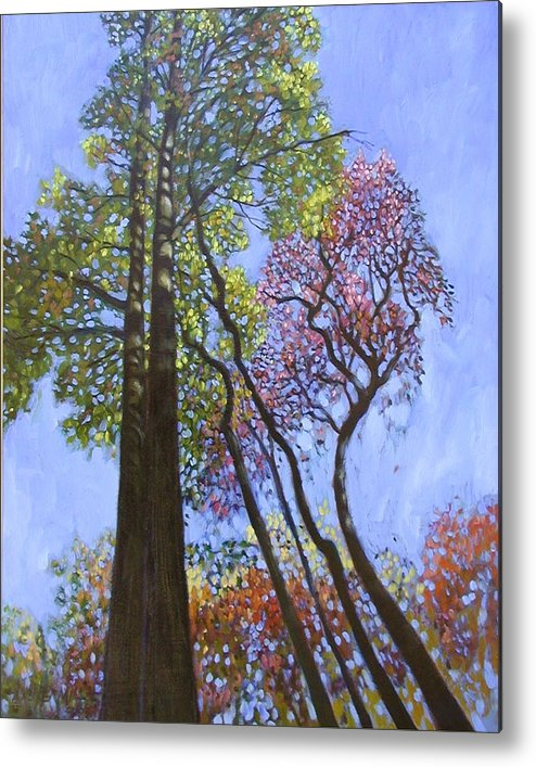 Fall Trees Highlighted By The Sun Metal Print featuring the painting Sunlight On Upper Branches by John Lautermilch
