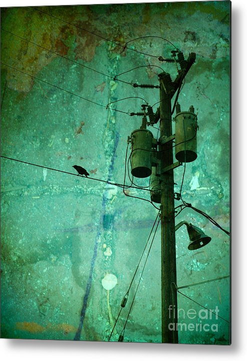 Urban Metal Print featuring the photograph The Urban Crow by Tara Turner