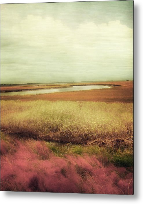Landscape Photography Metal Print featuring the photograph Wide Open Spaces by Amy Tyler