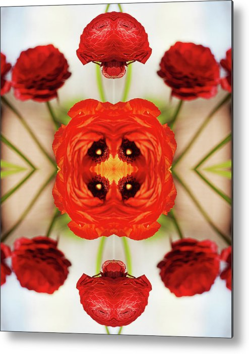Tranquility Metal Print featuring the photograph Ranunculus Flower by Silvia Otte