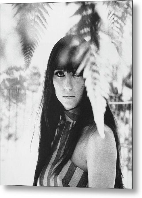 Cher - Performer Metal Print featuring the photograph Cher Portrait With Ferns by Michael Ochs Archives