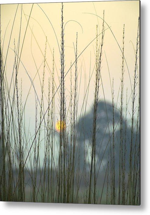 Landscape Metal Print featuring the photograph morning Star by Ravi Bhardwaj