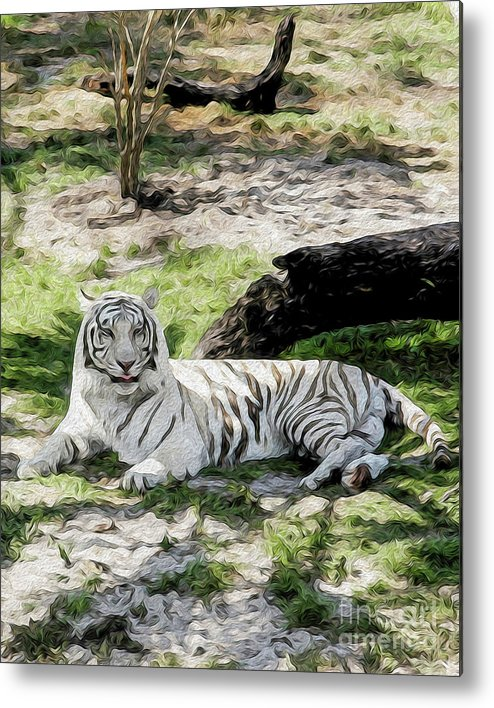 Nature Metal Print featuring the digital art White Tiger at Rest by Kenneth Montgomery