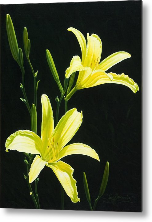 Floral Metal Print featuring the painting Monikas Yellow Lilies by Gary Hernandez