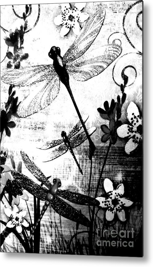 Dragonfly With Flowers. Black And White. Photograph. Natural Beauty. Landscape. Rose Wang Image. Metal Print featuring the photograph Dragonfly by Rose Wang