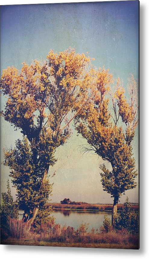 Trees Metal Print featuring the photograph You Were Meant For Me by Laurie Search