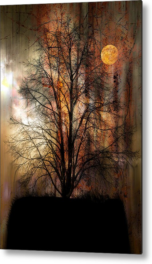Landscape Metal Print featuring the photograph 1107 by Peter Holme III