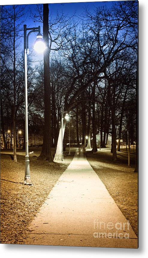 Park Metal Print featuring the photograph Park Path At Night by Elena Elisseeva