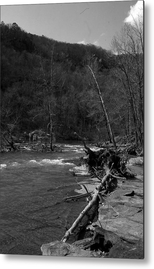Metal Print featuring the photograph Long-pool-log-jam by Curtis J Neeley Jr