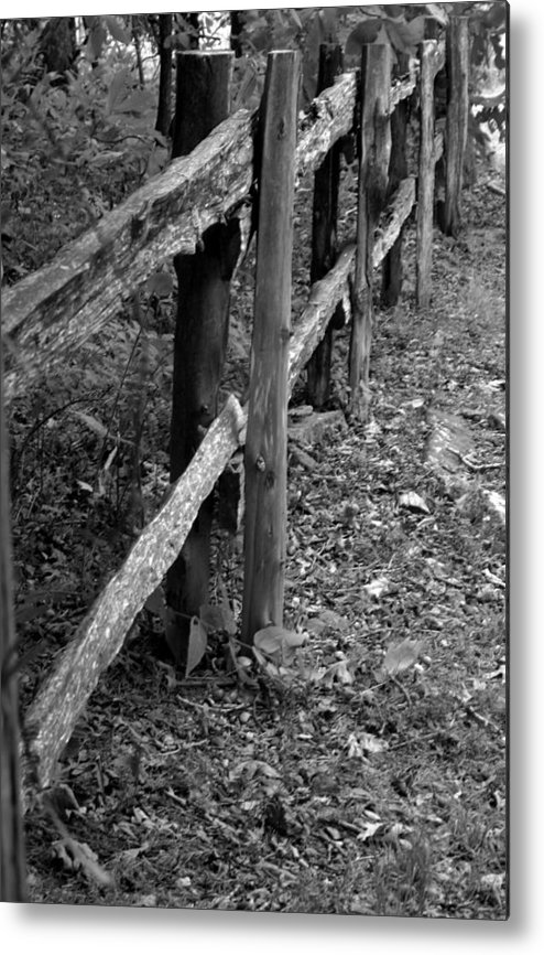 Ansel Adams Metal Print featuring the photograph Momvisitfence-carterlane by Curtis J Neeley Jr