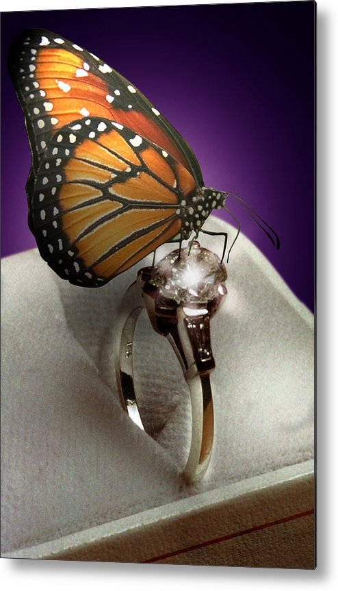 Fantasy Metal Print featuring the photograph The Butterfly And The Engagement Ring by Yuri Lev