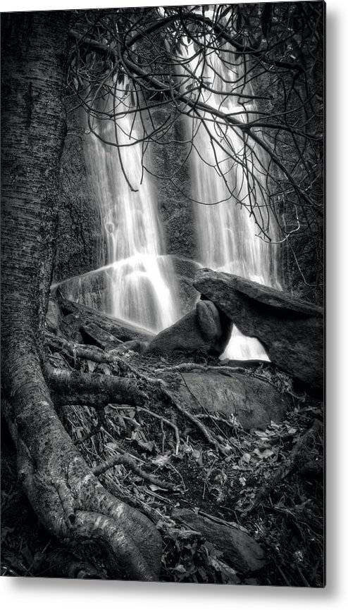 Waterfall Metal Print featuring the photograph Tree At Falls In Black And White by Greg Mimbs