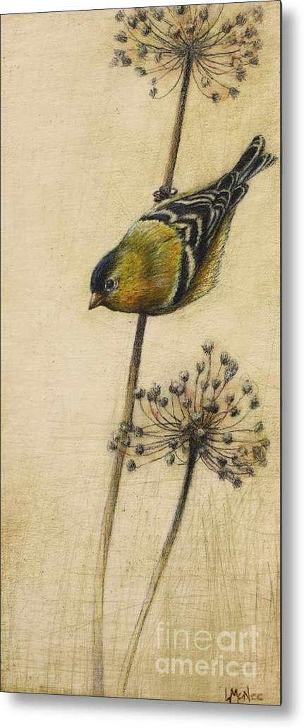 Goldfinch Metal Print featuring the drawing Goldfinch by Lori McNee