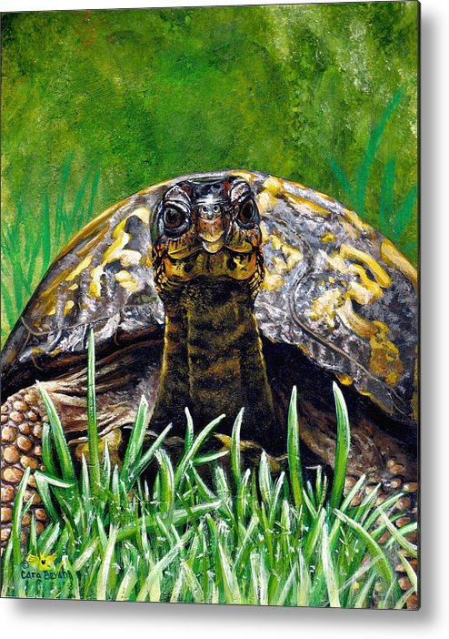 Turtle Metal Print featuring the painting Smile by Cara Bevan