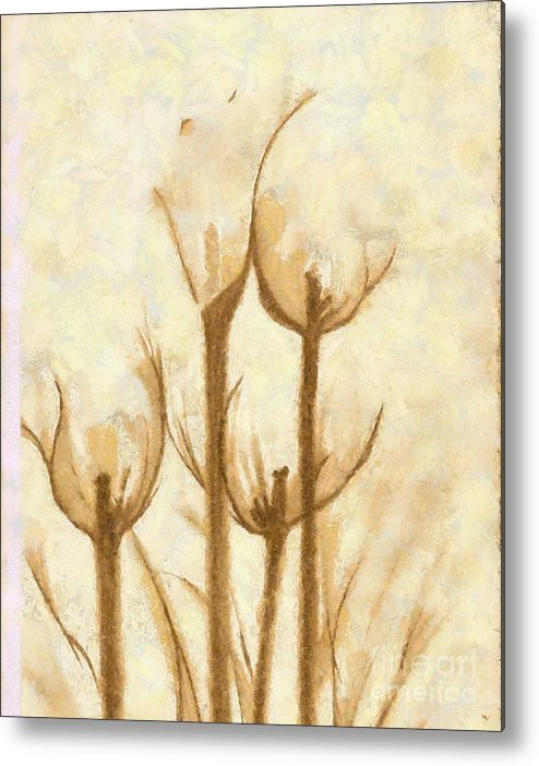 Artwork Metal Print featuring the mixed media Flower Sketch by Yanni Theodorou