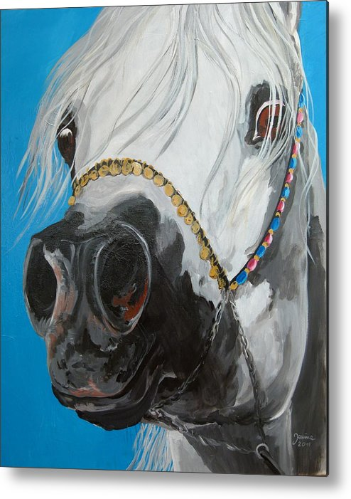 Horse Original Painting Metal Print featuring the painting Latif Al Jazar by Janina Suuronen