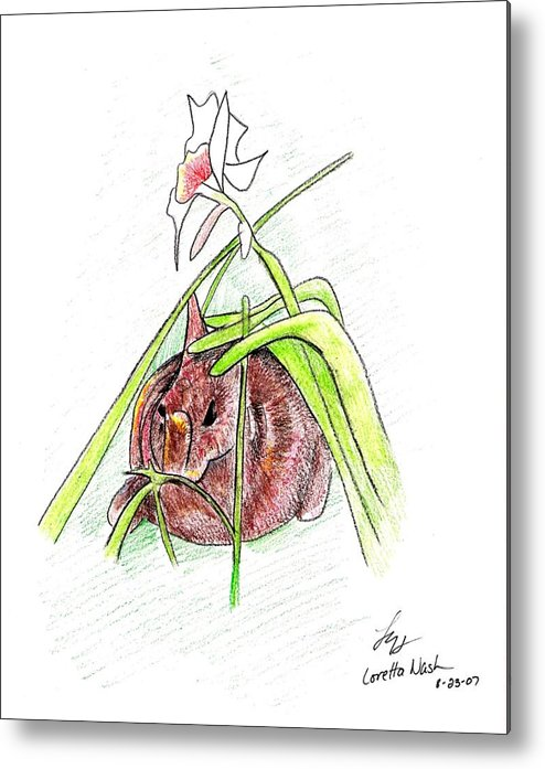 Rabbit Metal Print featuring the drawing Rabbit by Loretta Nash