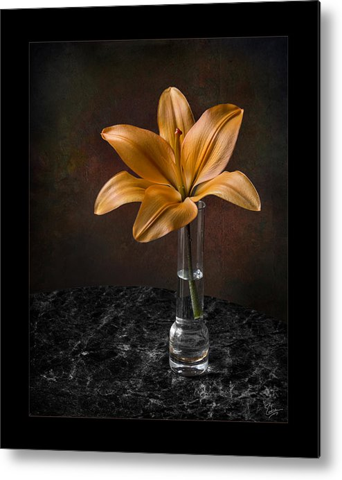 Flower Metal Print featuring the photograph Single Asiatic Lily In Vase by Endre Balogh