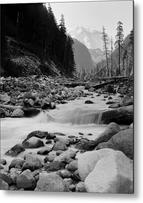 Mount Rainier Metal Print featuring the photograph Carbon River by Rakesh Malik