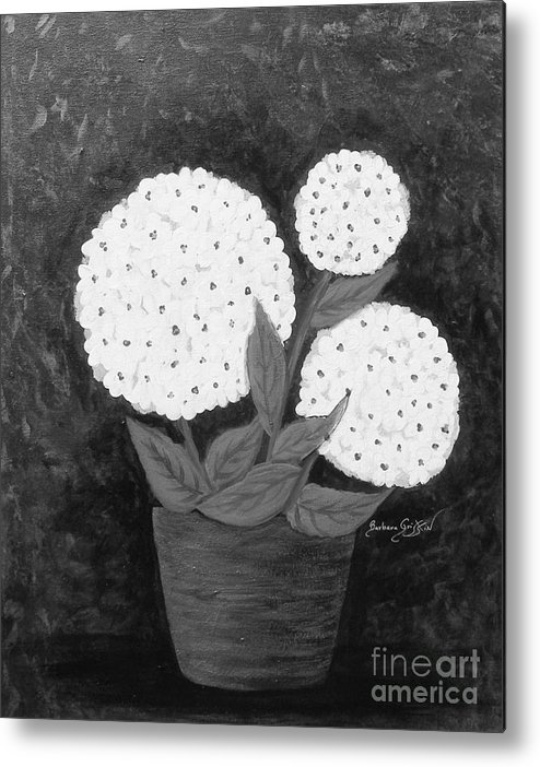 Snowball Plant Metal Print featuring the painting Snowball Plant B W by Barbara Griffin