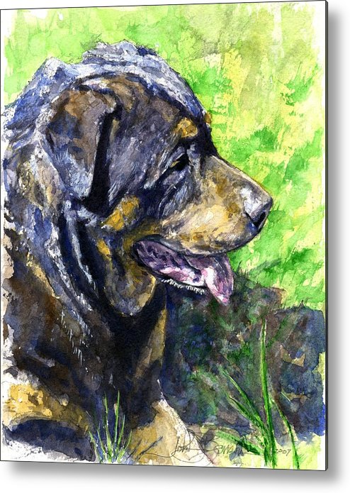 Rottweiler Metal Print featuring the painting Chaos by John D Benson